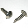 Self Tapping Screws, pair